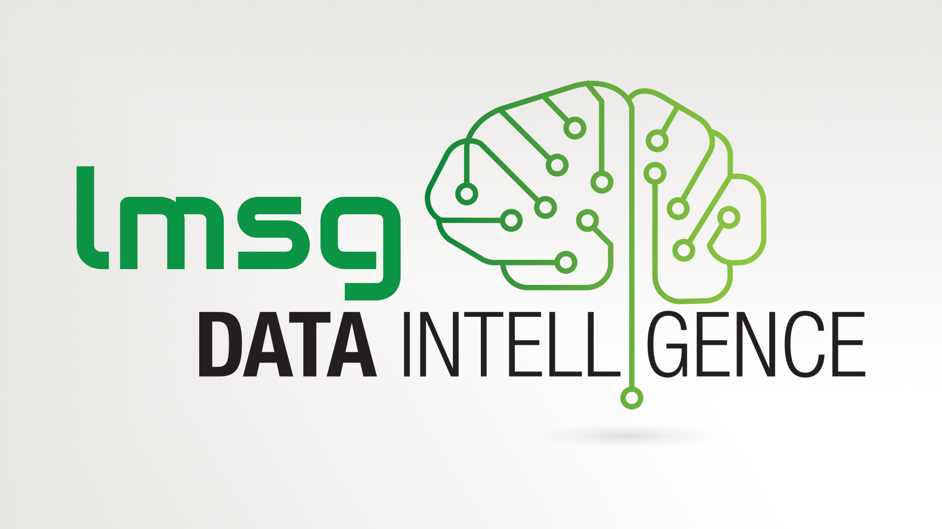 LMSG Data Intelligence